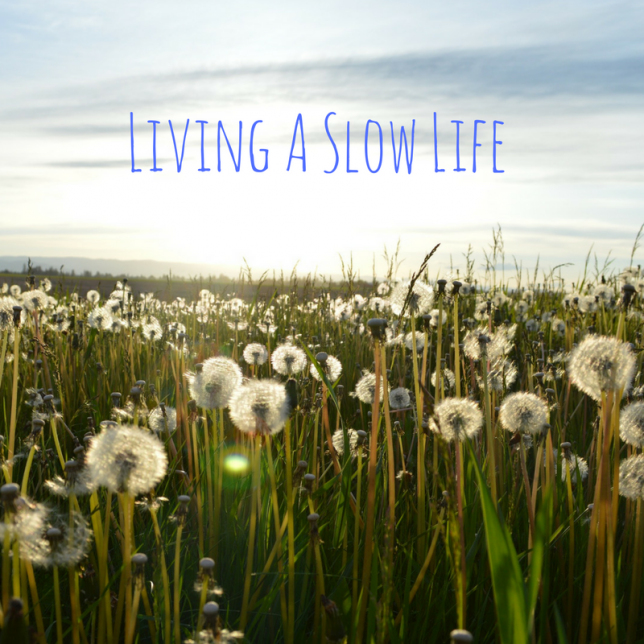 Living A Slow Life