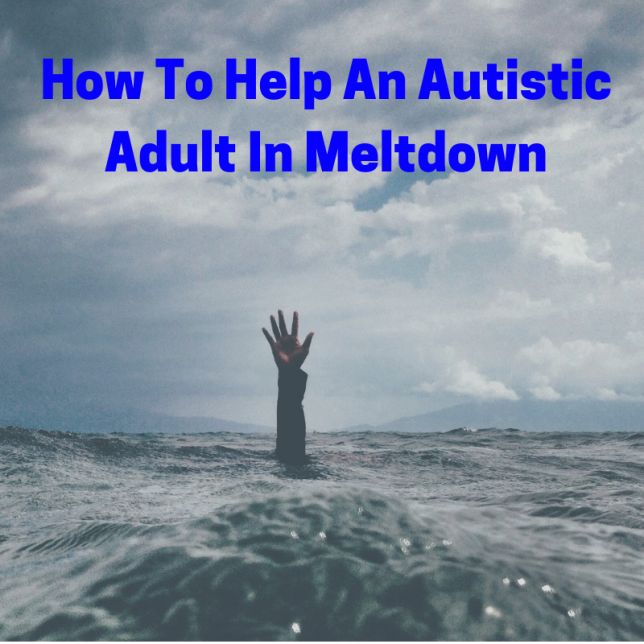 help an autistic adult in meltdown